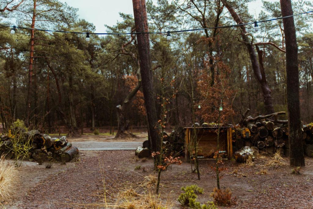 Tiny House op de Veluwe bij Droompark de Zanding