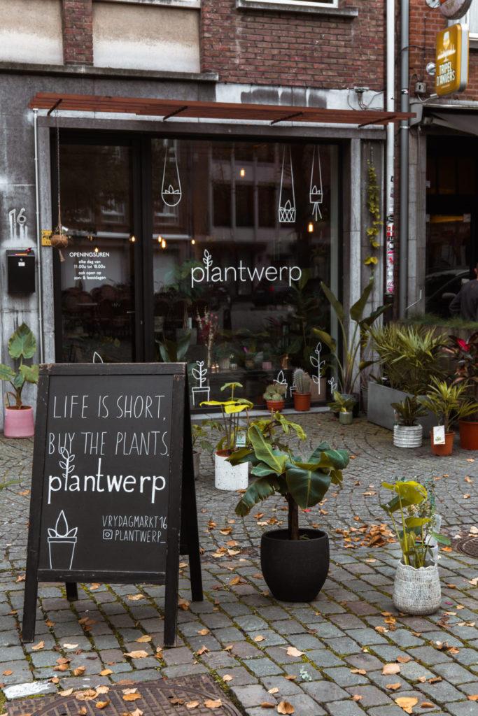 Plantenwinkel Plantwerp op de Vrijdagmarkt in Antwerpen