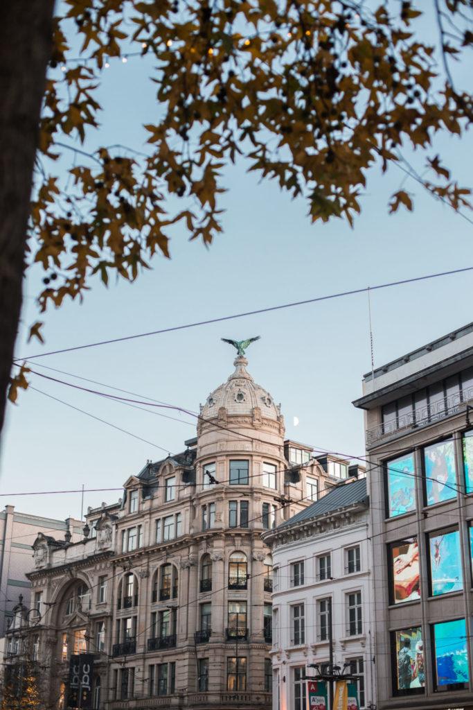 Verhuizen naar Antwerpen: zo waren de eerste maanden