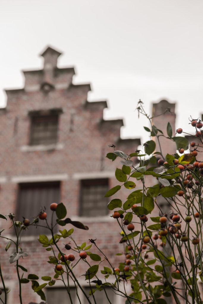 Stadswandeling door Antwerpen: ontdek deze bezienswaardigheid in 't Schipperskwartier.