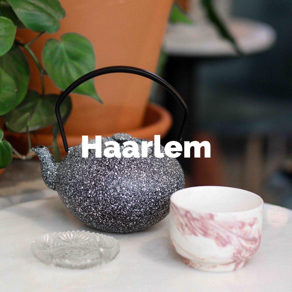 Ontdek alle hotspots in Haarlem
