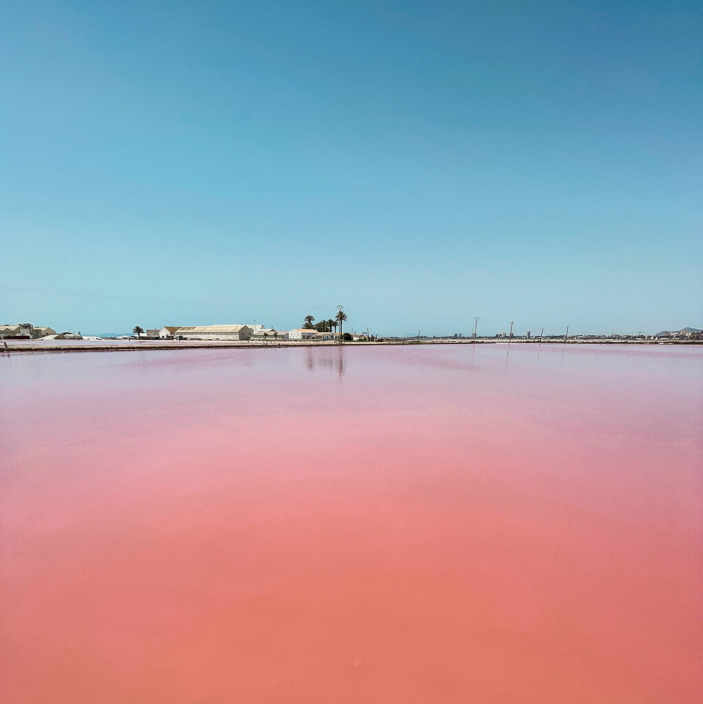 Zoutmeren van Las Salinas de Torrevieja in Murcia, Spanje